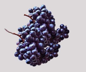 Black Grape Blackmagic