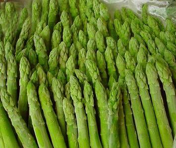 Green Asparagus - France