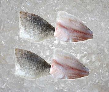 Sea Bream - Fillet
